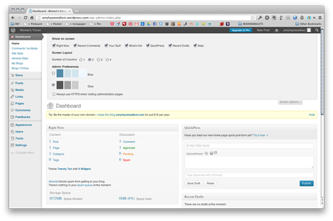 Wordpress Dashboard - Screen Options